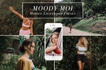 Mobile Lightroom Preset MOODY MOI 3613902 5