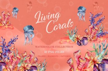 Living Corals Watercolor png 3483533 3