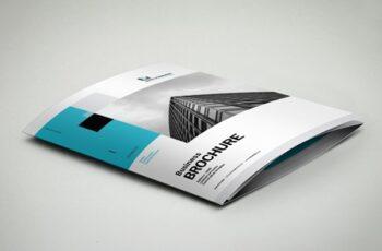 3xA4 Trifold Brochure 3289378 5