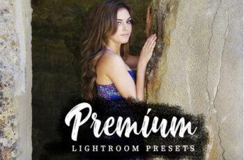 Premium Lightroom Presets 3547173 6