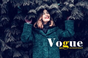 25 Vogue Lightroom Presets 3547843 5