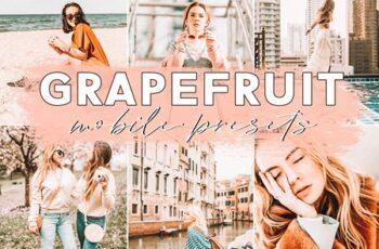 Grapefruit Blogger Mobile Presets 3621079