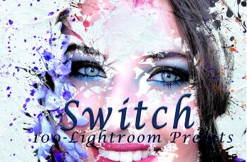 Switch Lightroom Presets 3547845 4