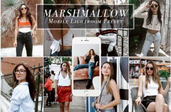 Mobile Lightroom Preset for Bloggers 3472020 7