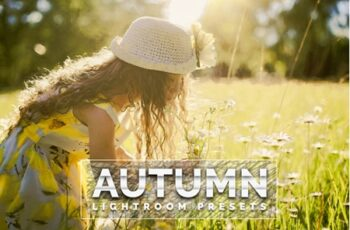 Autumn Lightroom Presets 3553569 5