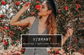 Desktop Lightroom Preset VIBRANT 3622962 4