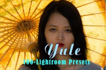 Yule Lightroom Presets 3552977 6
