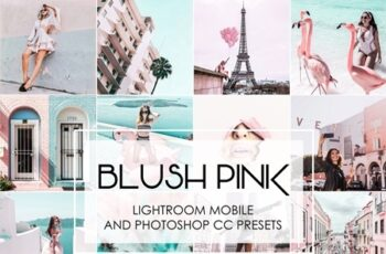 BLUSH PINK - Lightroom Presets 3687661 7