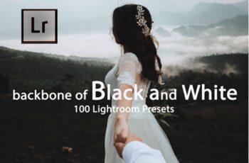 Backbone of Black and White Lightroom Presets 3
