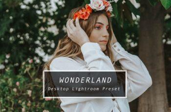 Desktop Lightroom Preset WONDERLAND 3622322 5