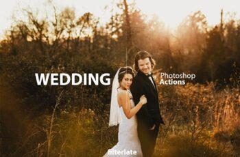 Wedding Actions Set 3622910 5