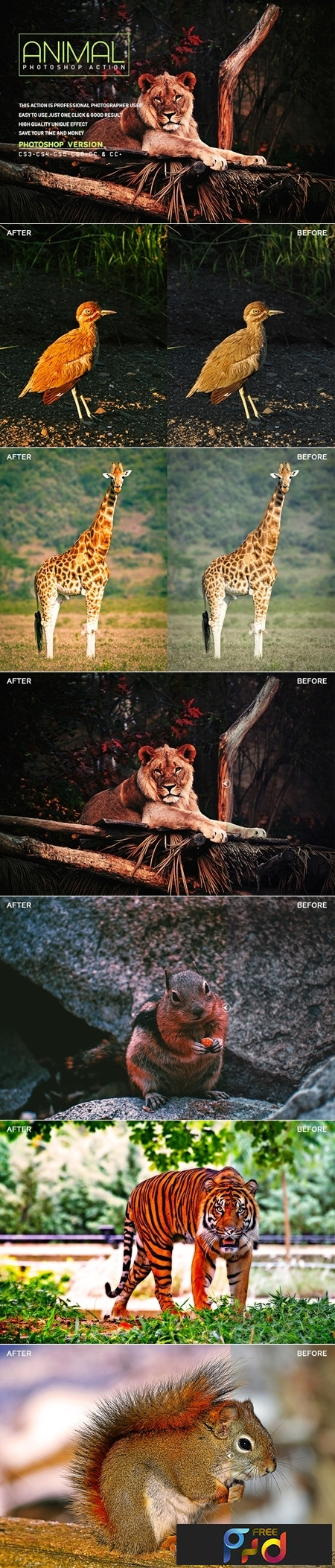 Animal Photoshop Action 1