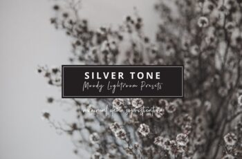 Ash Silver Lightroom Preset Desktop 3525189 3