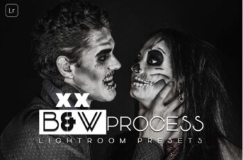 B and W Process Lightroom Presets 2