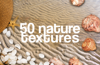 50 Nature Textures Beach Grass Rocks Sea 1259812 6