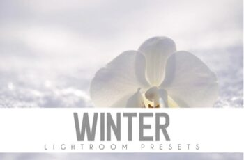 Winter Lightroom Presets 2