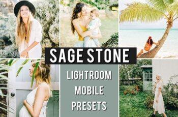 Mobile Preset SAGE STONE 3659099 5