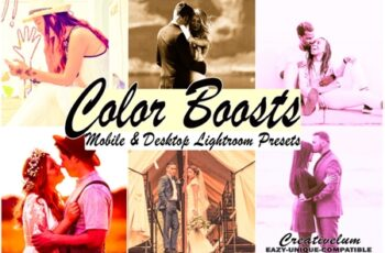 Color Boosts MobileLightroom Presets 5