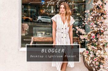 Desktop Lightroom Preset BLOGGER 3628791 2
