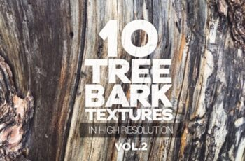 Tree Bark Textures X10 Vol2 1441125 1