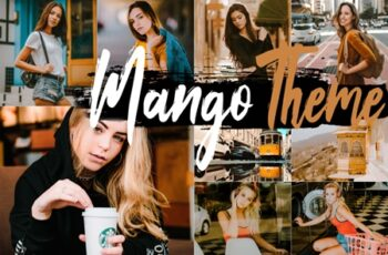 Neo Mango Theme Desktop Lightroom Presets 5