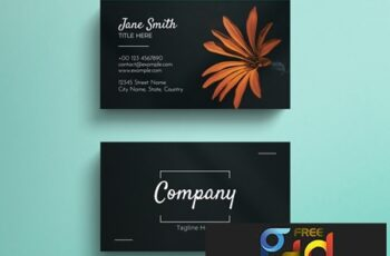 Simple Black Business Card Layout with Photograph Accent 264618401