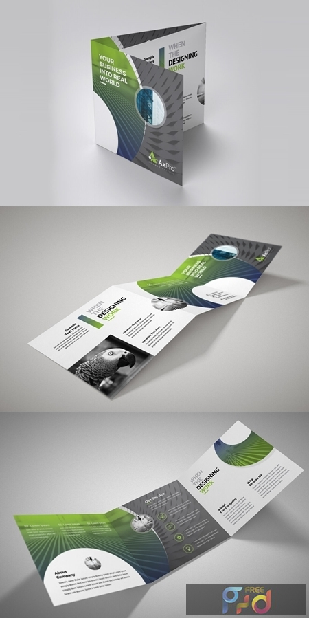 Business Square Trifold 3581088 1