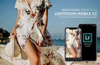 Lightroom Mobile Presets 3769345 6