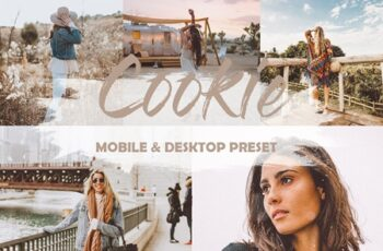 4 Mobile and Desktop Lightroom Presets Cookie 23858478 5