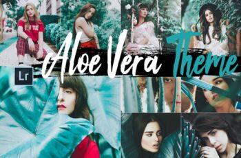 Neo Aloe Vera Theme Desktop Lightroom Presets 4