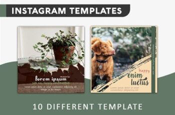 Instagram Post Templates 3589002 6