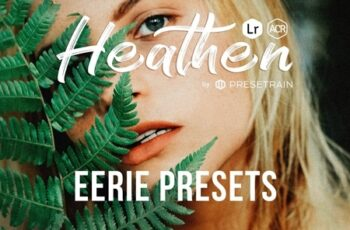 Heathen Eerie Presets for Lightroom & Photoshop 4