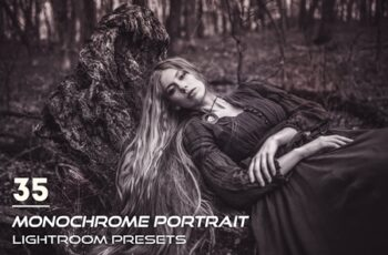 35 Monochrome Portrait Lightroom Presets 3844398 6