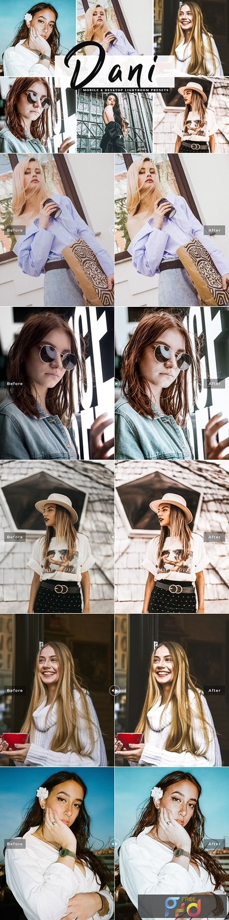 Dani Mobile & Desktop Lightroom Presets 1
