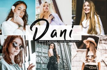 Dani Mobile & Desktop Lightroom Presets 3