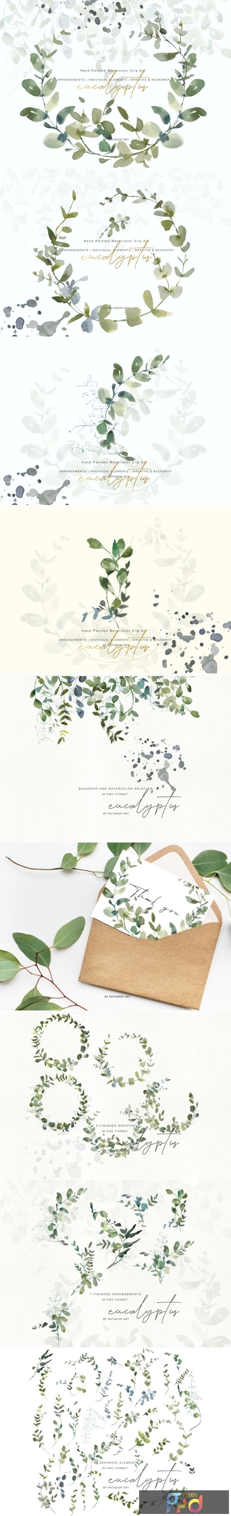 Watercolor Eucalyptus Clipart Collection 1505797 1