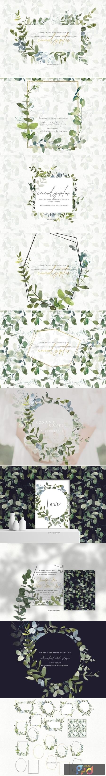 Watercolor Eucalyptus Clipart Collection 1505798 1