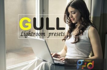 Gull Instagram Blogger Lightroom Presets 5