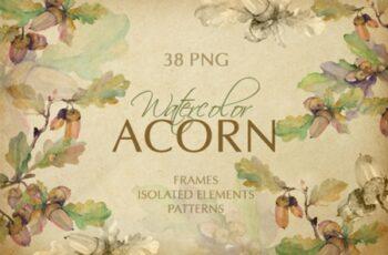 Acorn Watercolor Png 1558418 3
