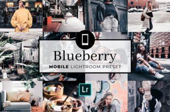 Mobile Lightroom Preset Blueberry 3321762 3