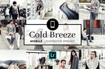 Mobile Lightroom Preset Cold Breeze 3321735 3