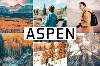 Aspen Mobile & Desktop Lightroom Presets 3927944 3
