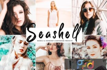 Seashell Mobile & Desktop Lightroom Presets Q86MYJE 5