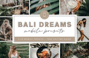 Bali Lightroom MOBILE Presets 3908640 6