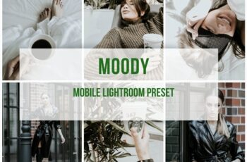 Lightroom Mobile Preset Moody 3908487 4