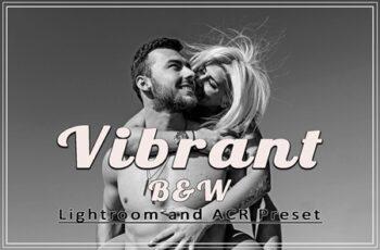 Vibrant B&W Lightroom and ACR Presets 3603099 8