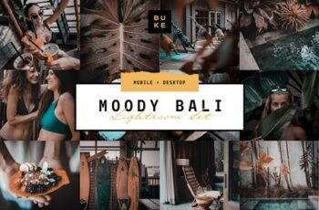 MOODY BALI TRAVEL LIGHTROOM PRESETS 3916193 7