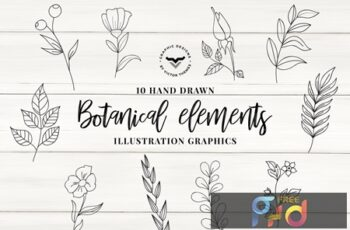 Botanical Elements Vector 73MYFD2 8