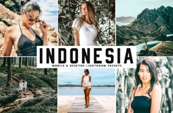 Indonesia Mobile & Desktop Lightroom Presets 5SBL27R 6