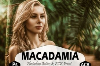 Macadamia Photoshop Actions, ACR Presets 1629265 5